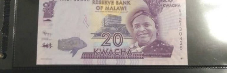 Малавийская квача