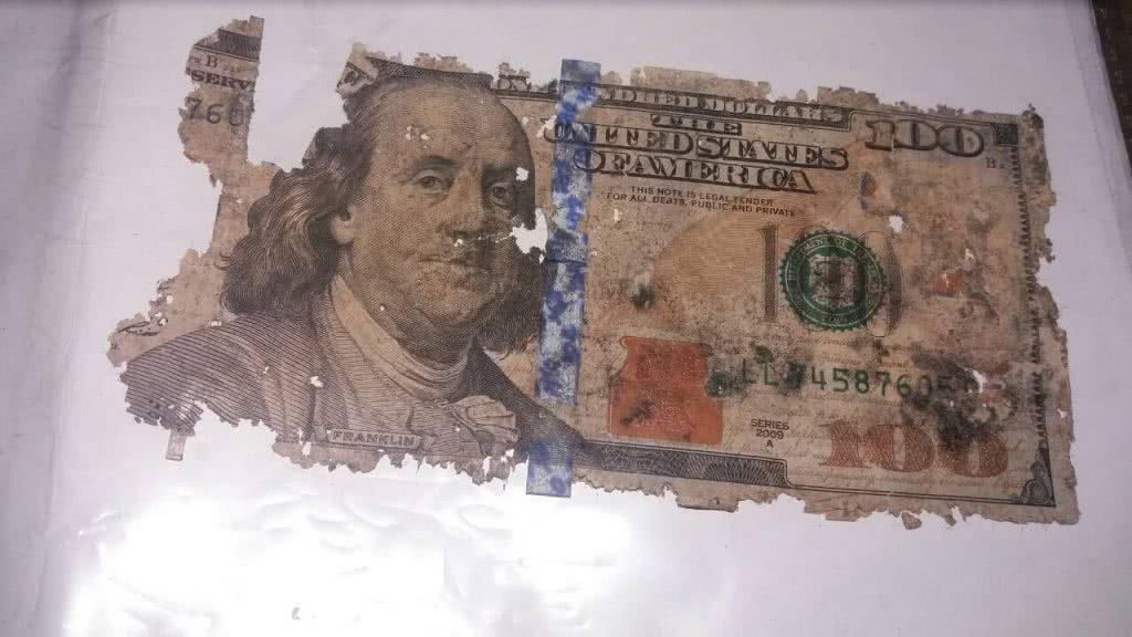 прогнившие 100 американских долларов